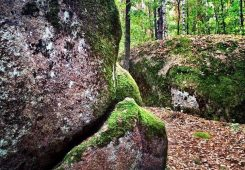 Поездка тур в Каменное Село