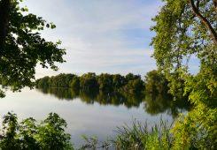Парк Александрия Пархомовка