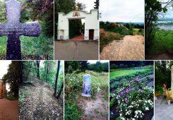 Экскурсия в Выдубицкий монастырь и ботсад