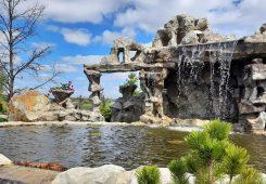Поездка выходного дня в парк Александрия