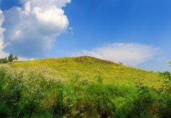 Место силы Шаева гора, Семидубовая гора